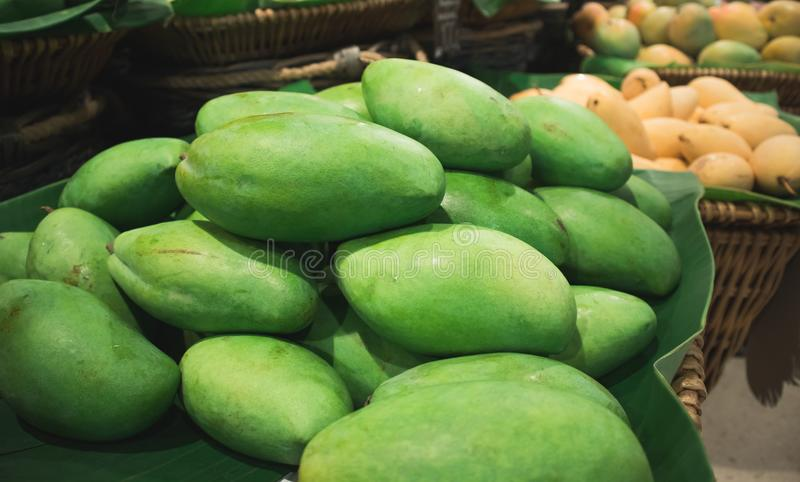 Thai green mango in basket with yellow mango background stock photos