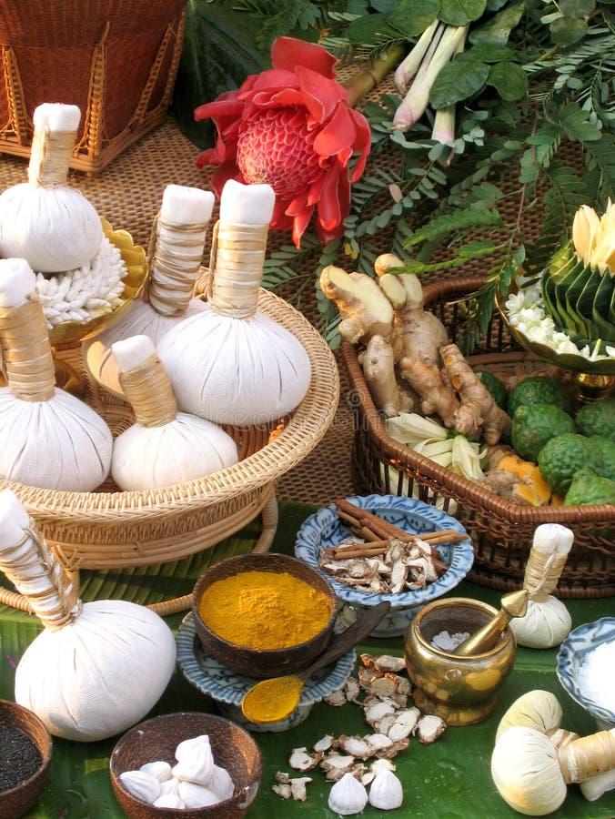 Download Thai Herbal Compress stock image. Image of thai, herbal - 18560047