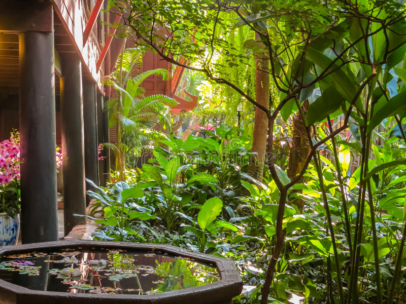 Thai house and tropical garden. Bangkok, Thailand royalty free stock image