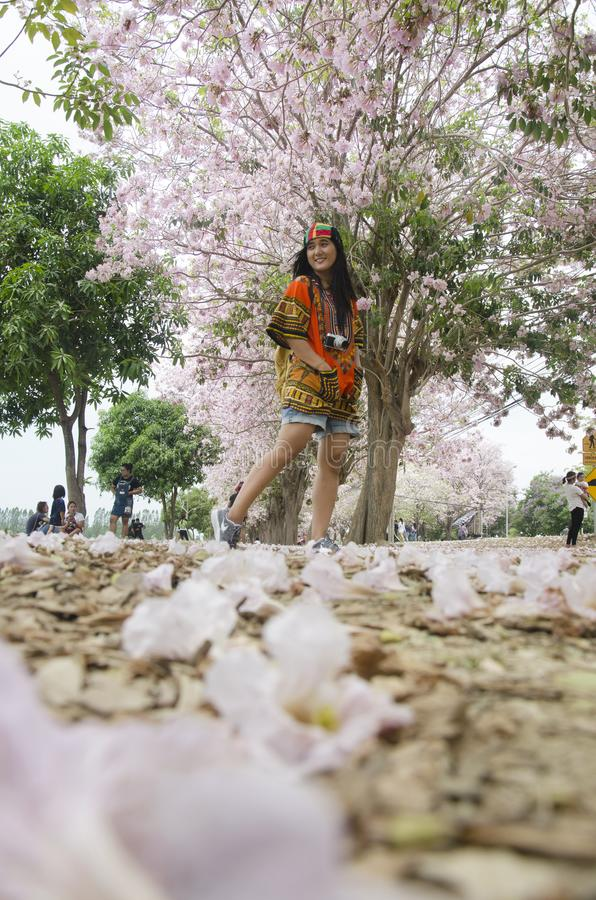 Thai kvinnor för asiatiska handelsresande som går den rosa trumpetblomman för lopp och för besök i trädgård royaltyfri foto