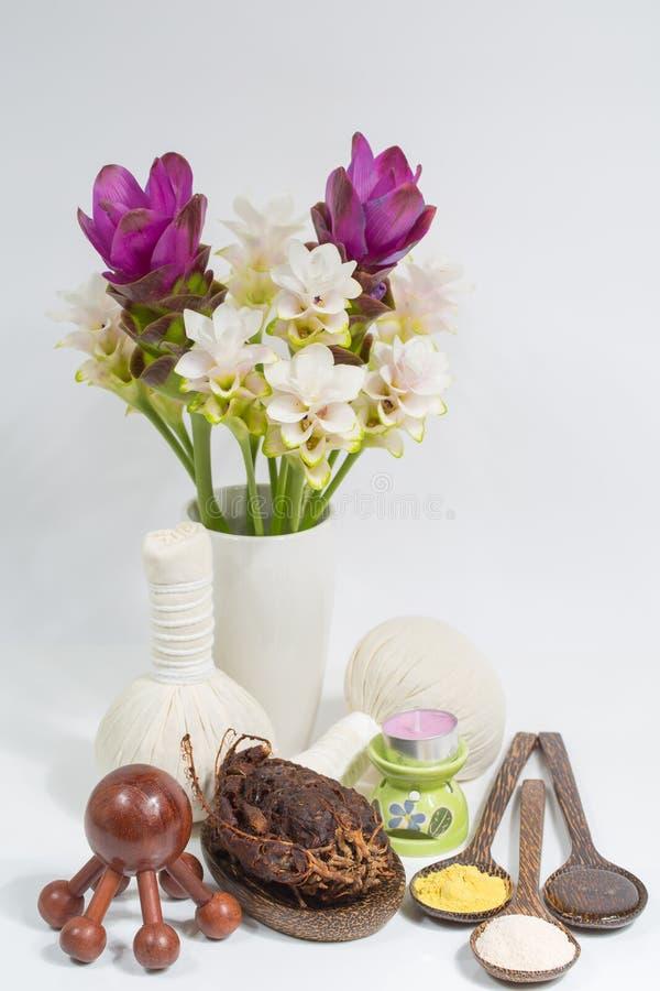 thai massagebrunnsort royaltyfri bild