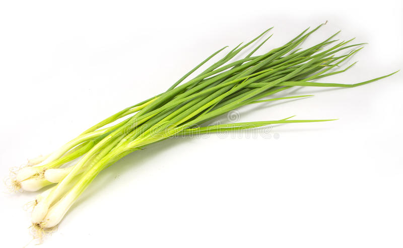Thai onion spring group on sack background royalty free stock image