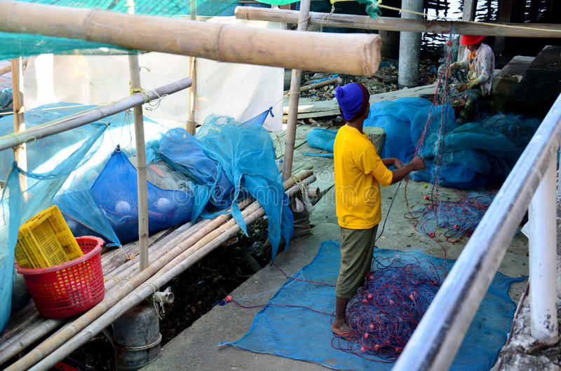 Thai people working pull and select shellfish from fishnet at fishing village royalty free stock photography