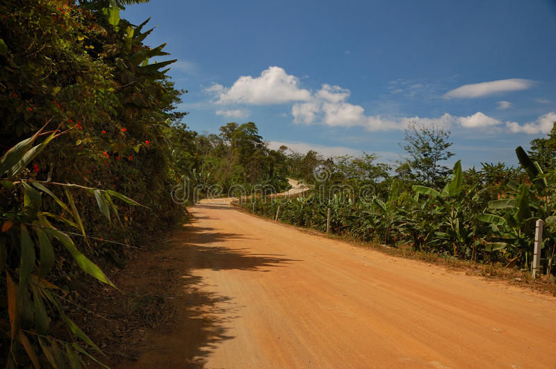 Download Thai road in jungle stock photo. Image of travel, open - 9735406