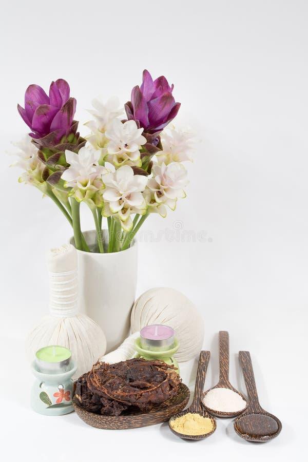 Thai spa Massage royalty free stock photo