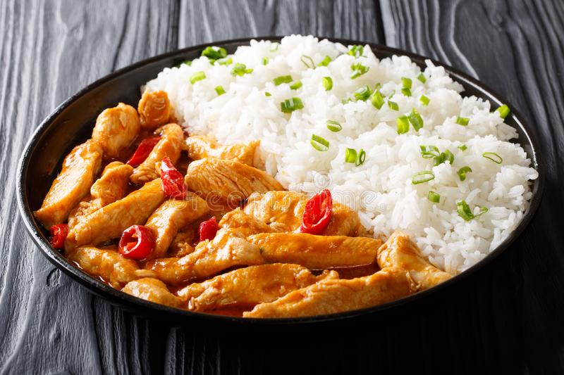Thai street food: chicken panang curry with garnish of rice close-up on a plate. horizontal royalty free stock photos