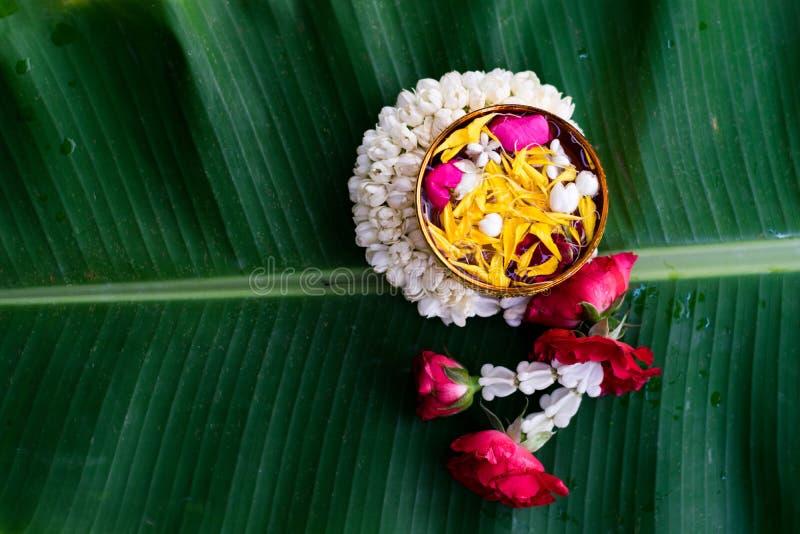 Thai traditional for Songkran Festival stock image