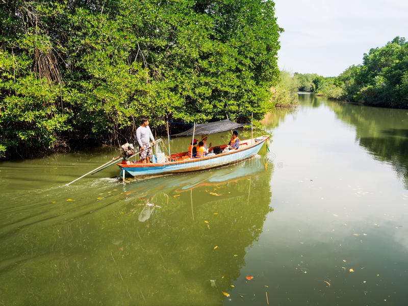 Thai travelers take the boat trip along the canal among the mangrove stock photography