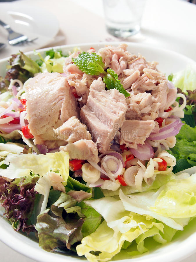 Thai Tuna salad stock image