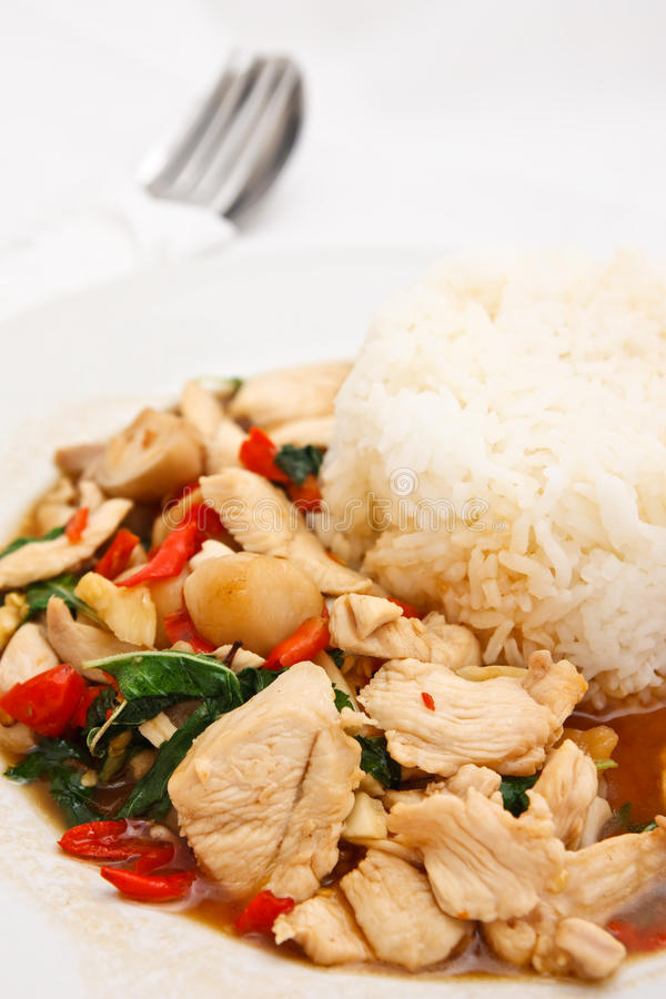 thai varm kryddig stil för mat royaltyfria foton