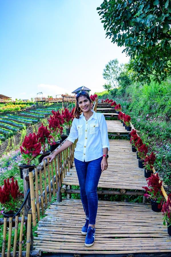 Thai woman at Doi Mon Cham. Chiang Mai province royalty free stock photo