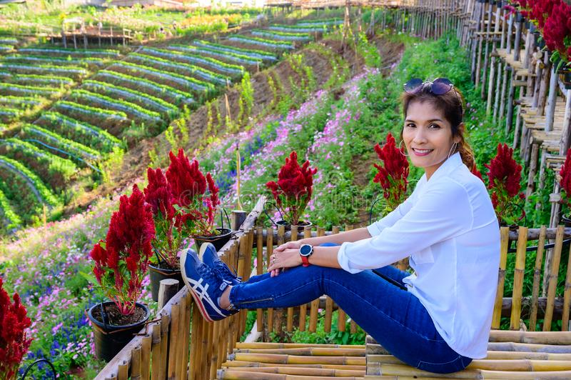 Thai woman at Doi Mon Cham. Chiang Mai province stock photo