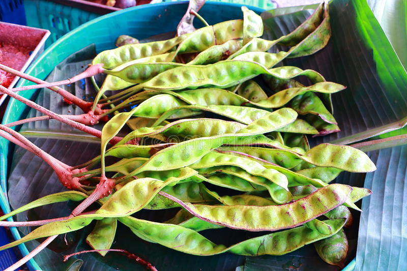 Thaifood fotografia royalty free