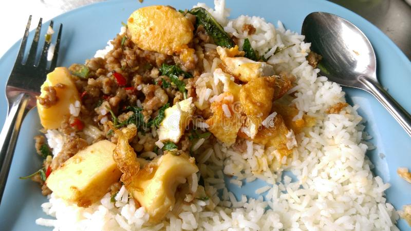 Thaifood. Thai food in meal Fried Stir Basil with Minced pork royalty free stock photography