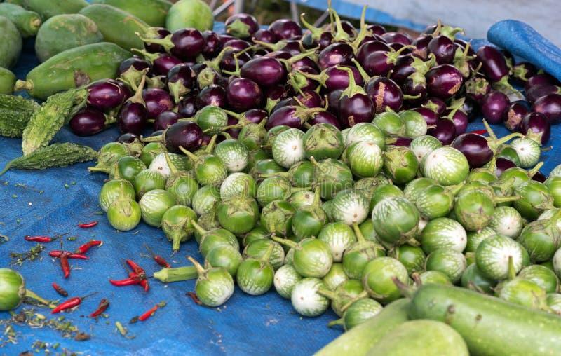 Thailändische Aubergine und purpurrote Aubergine lizenzfreies stockbild