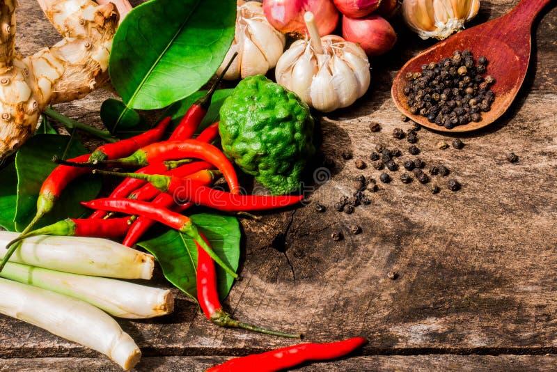 Thailändische Kräuter zur Curry-Paste Nein 02 lizenzfreie stockbilder