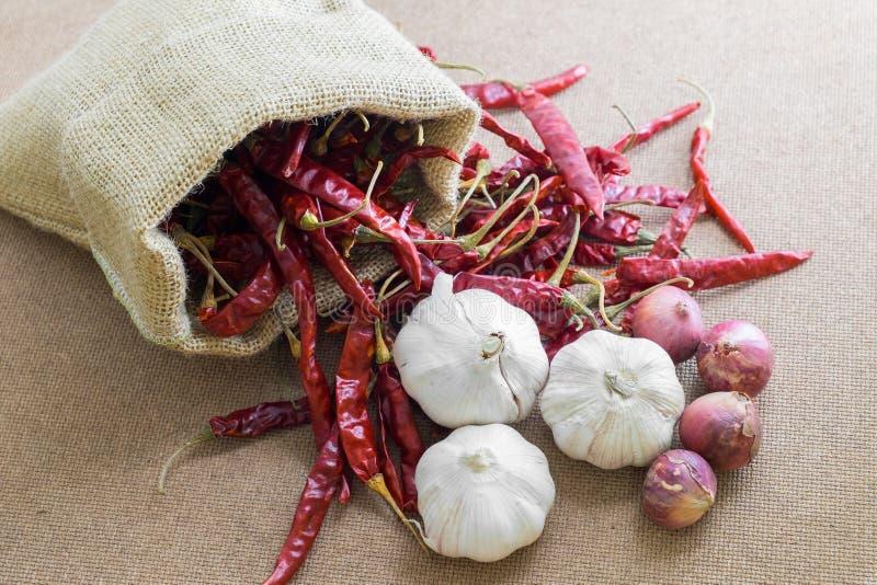 Thailändische Lebensmittelinhaltsstoffe (getrocknete Paprikas, Knoblauch, Schalotte) stockfotografie
