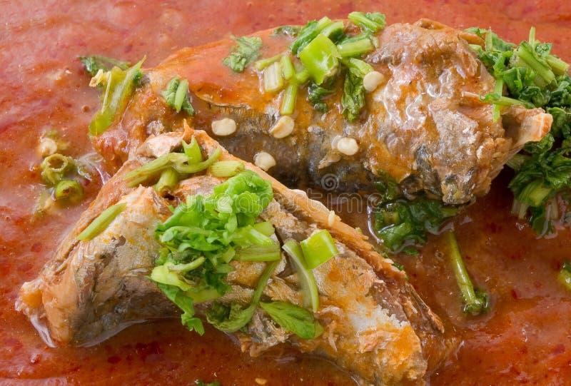Thailändische würzige Fisch-Sardinen im Tomatensauce-Salat lizenzfreie stockfotos
