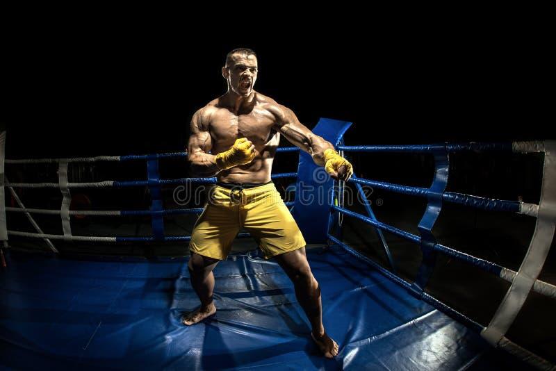 Thailändischer Boxer auf Boxring stockfotos