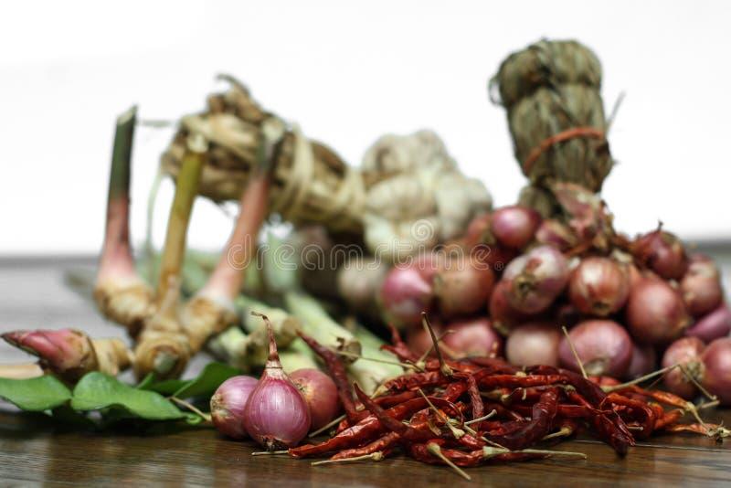 Thailändischer Curry Bestandteil lizenzfreies stockbild