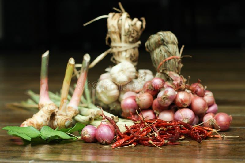 Thailändischer Curry Bestandteil stockbilder
