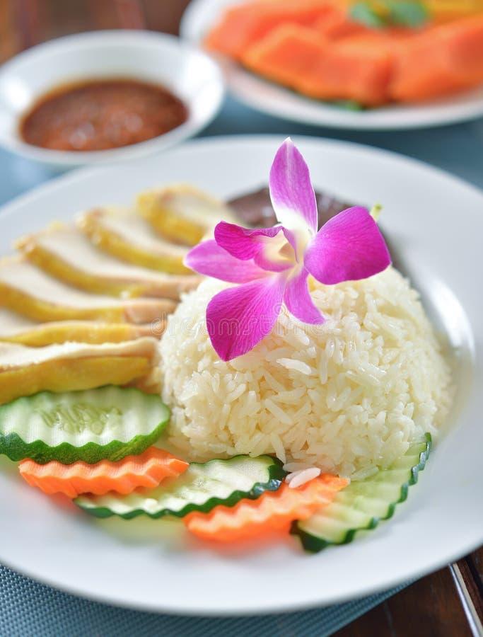 Thailändischer Feinschmecker gedämpftes Huhn mit Reis lizenzfreie stockbilder