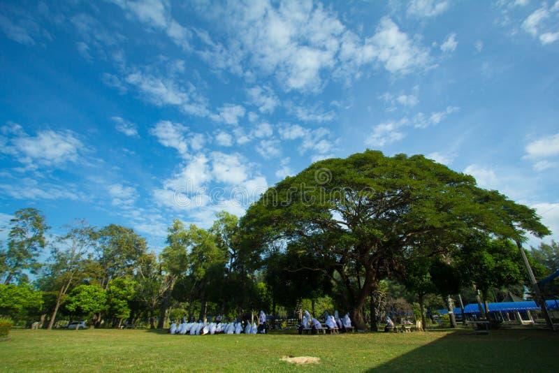 Thailändischer Student am Park Pattani Thailand Asien stockfotografie