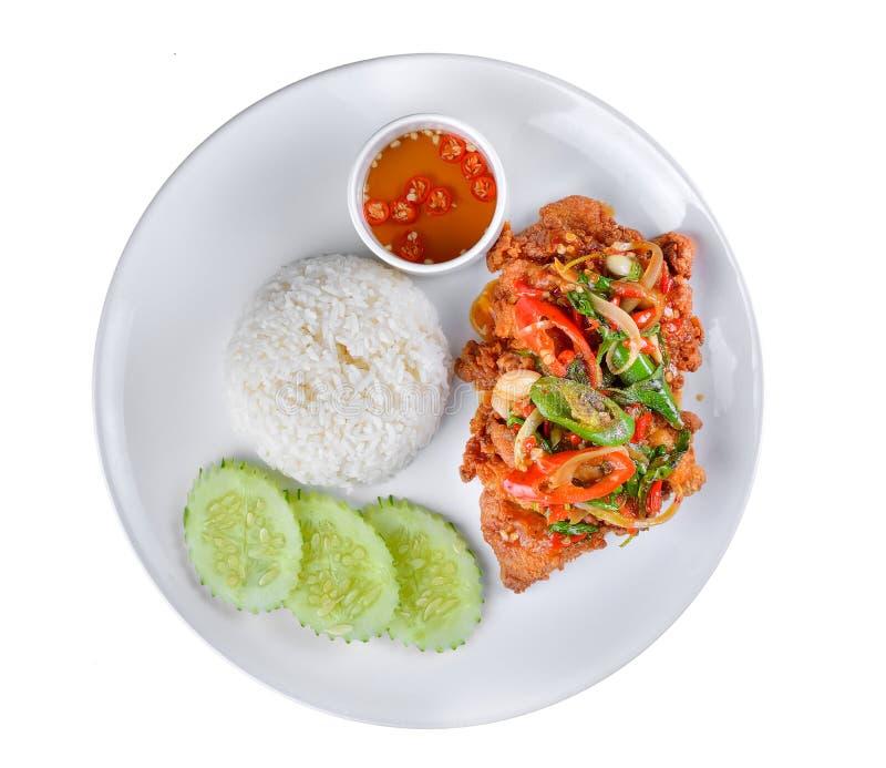 Thailändisches Lebensmittelhuhn und -basilikum dienten mit Reis auf weißem Hintergrund stockfotos