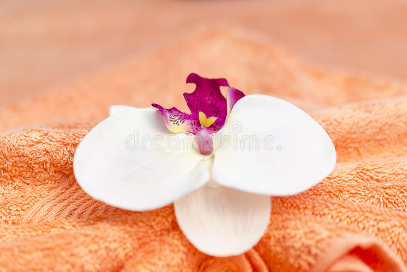 Thailändsk massagegarnering royaltyfri fotografi