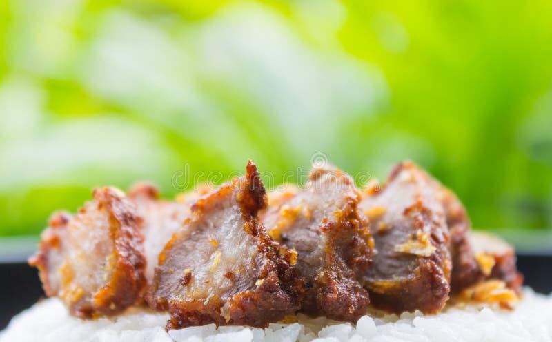 Thailändsk mat Fried Pork med vitlök och ris på naturligt grönt träd fotografering för bildbyråer