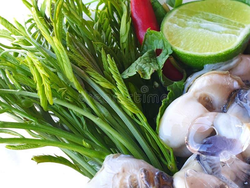 Thailändsk matstil, nya ostron med grönsaker akacian, citron skivade, chili, den stekte löken, vitlök och kryddig sås på vit arkivfoto