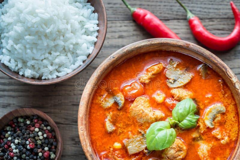 Thailändsk röd feg curry med vita ris royaltyfri fotografi