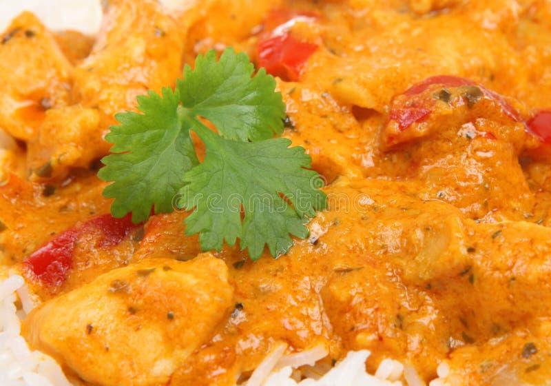 Thailändsk röd feg curry & ris arkivbilder