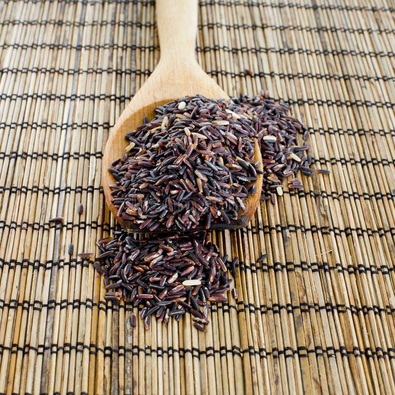 Thailändska svarta jasminris (risbär) i träsked arkivfoto