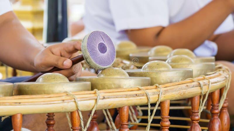 Thailändskt traditionellt instrument royaltyfria foton