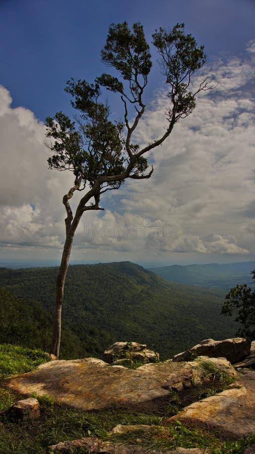 Thailand-chaiyaphum stockfoto