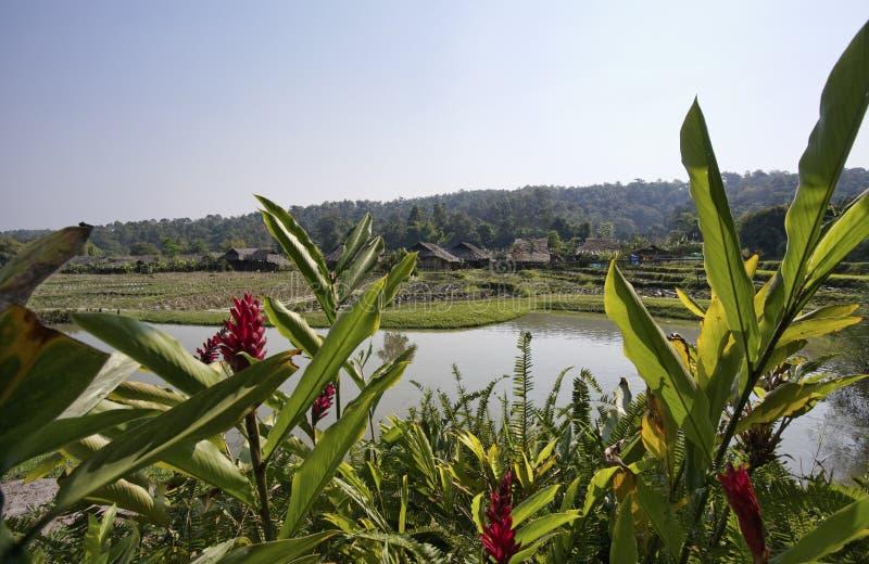 Thailand, Chiang Mai, Karen-langes Stutzendorf lizenzfreie stockbilder
