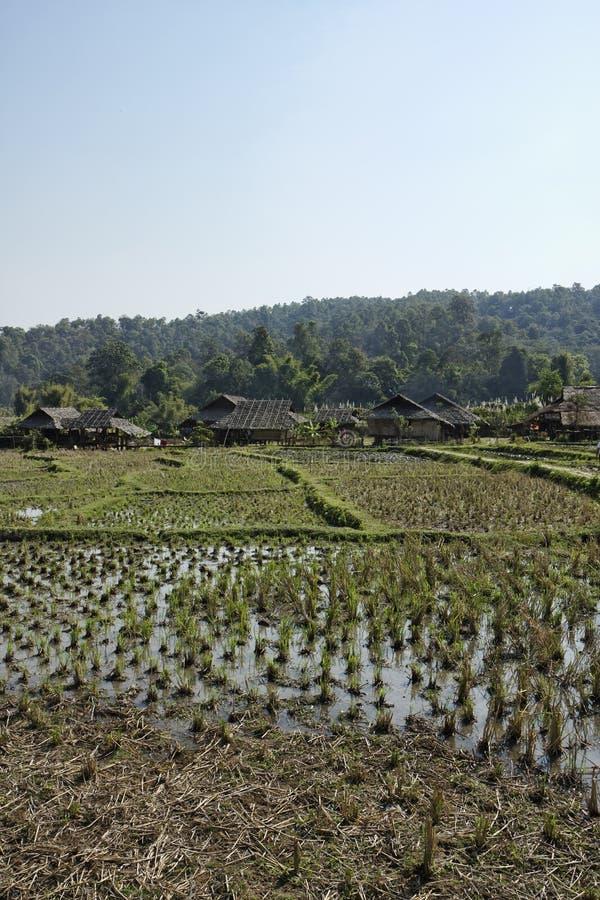 Thailand, Chiang Mai, Karen-langes Stutzendorf lizenzfreies stockbild
