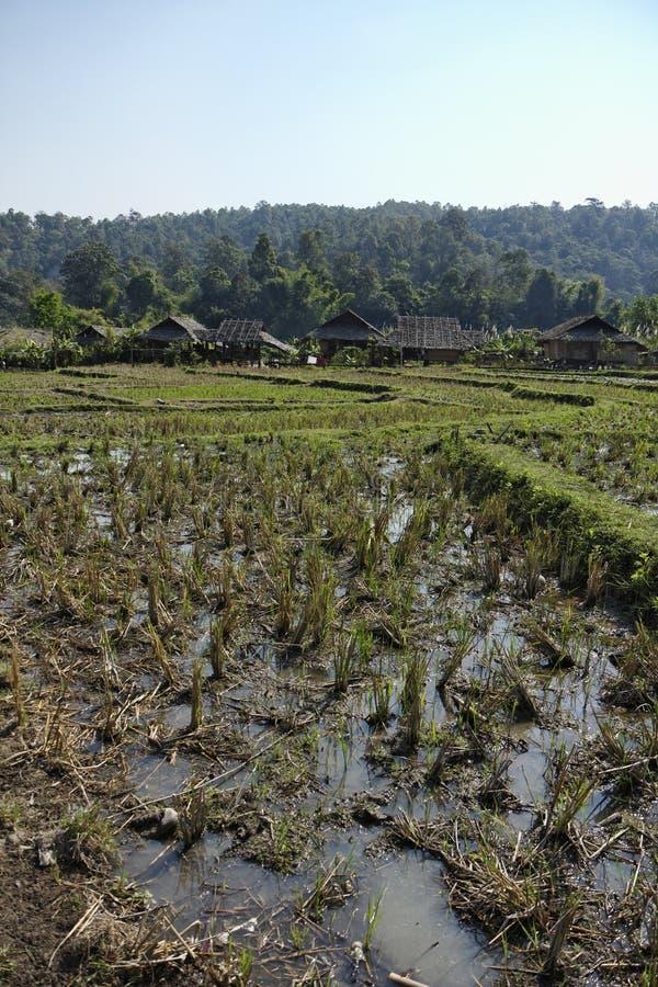 Thailand, Chiang Mai, Karen-langes Stutzendorf lizenzfreie stockfotos