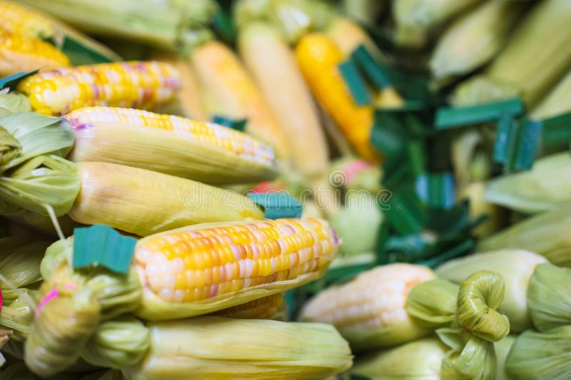 Thailand dessert. Steam sweet colorful corn with pandan leaves. Nutrition healthy Thai Food dessert royalty free stock photos