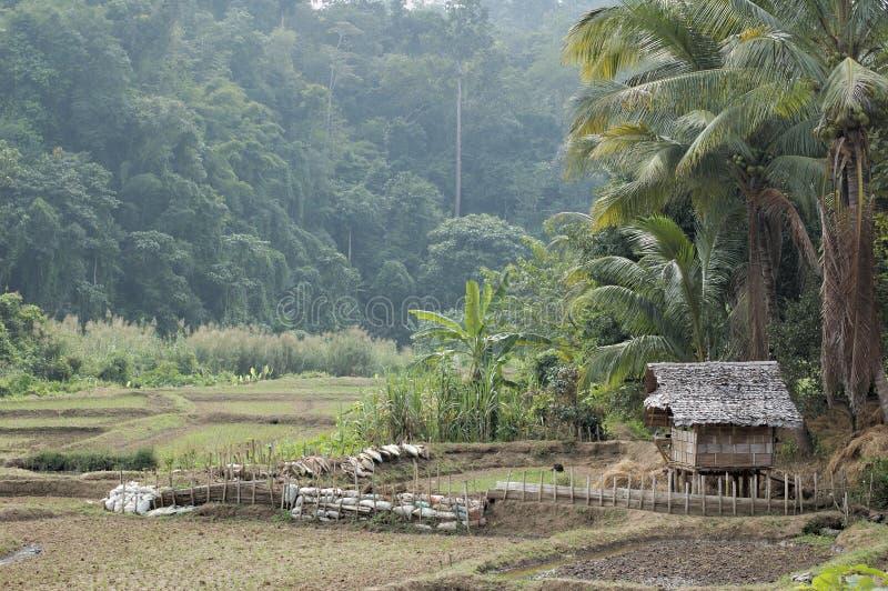Thailand - dorp stock fotografie