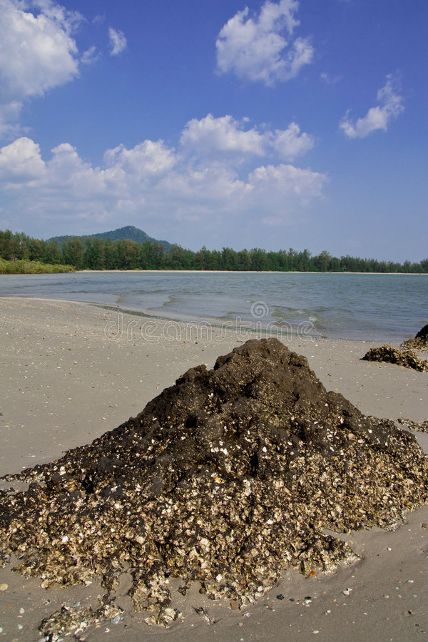 thailand för landskap för strandchaomai trang fotografering för bildbyråer