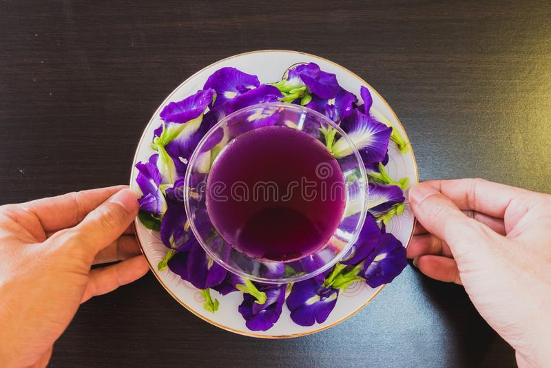 Thailand-frischer gesunder Kräuter- Getränk-Ein-Chan-Saft mit Zitronensaft-Schmetterlingserbsenblume lizenzfreie stockbilder