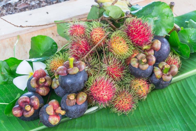 Thailand fruits royalty free stock photos