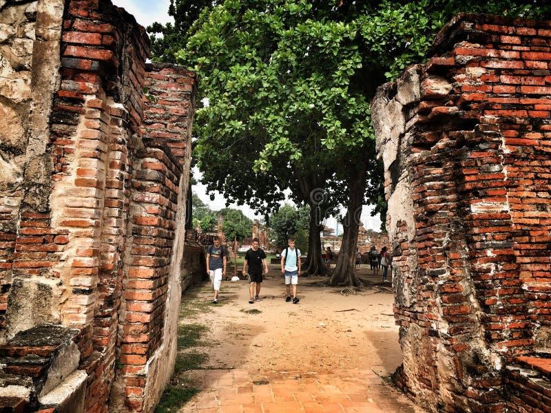 thailand lopp arkivbilder
