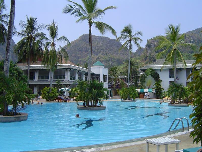 Download Thailand Resort stock image. Image of forest, poolside - 108067