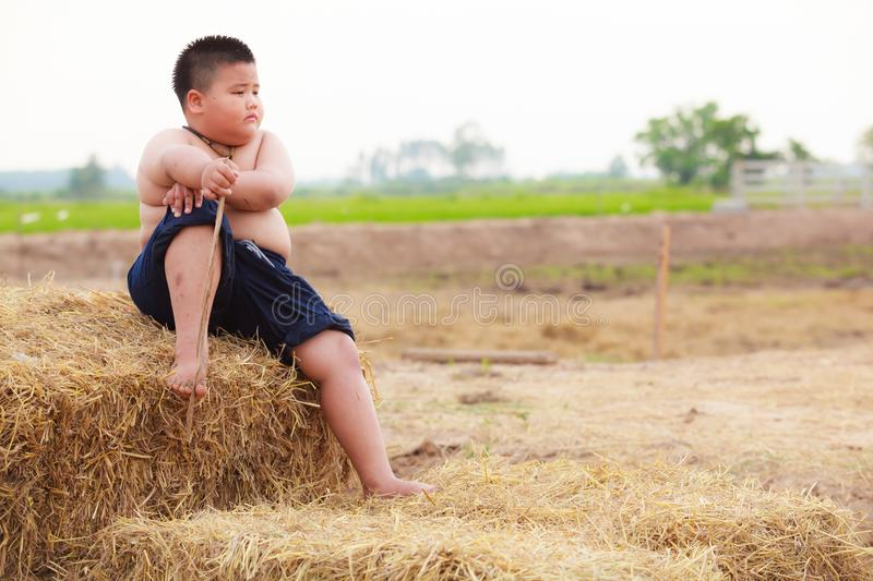 Thailand Rural Traditional Scene, Thai farmer shepherd boy sitting on dry straw stack pile in the farm. Thai Upcountry Culture stock photo