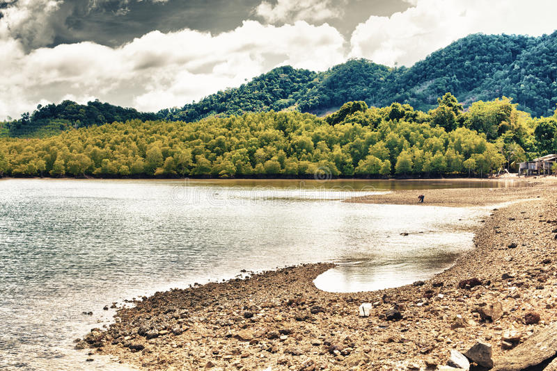 Thailand Shore