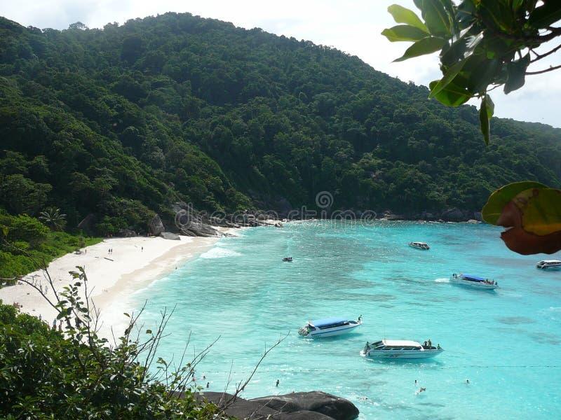 Thailand Similan island. Thailand bay Similan island Sea,white sand stock images