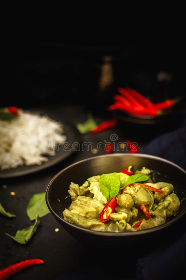 Thailand traditional cuisine, Green curry, Chicken curry, rice, street food, spicy curry royalty free stock images